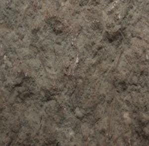 Кингисеппский, цвет 1, СКАЛА